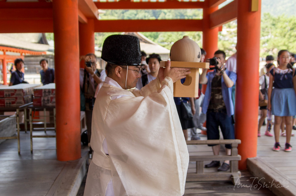 厳島神社 玉取祭 2016 (Itsuku-shima shrine TAMATORI Festival 2016)