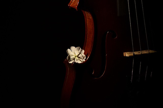 LIFE is a song ... LOVE is the music ...