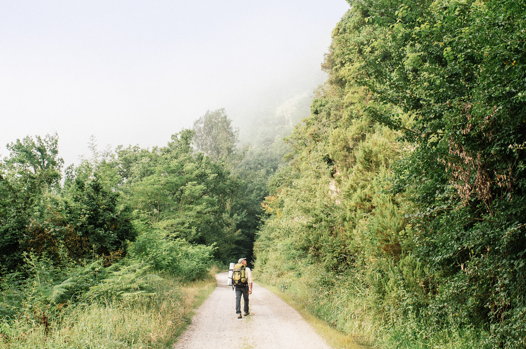 Randonnée le long de la vallée du Tarn - Carnet de voyage en France