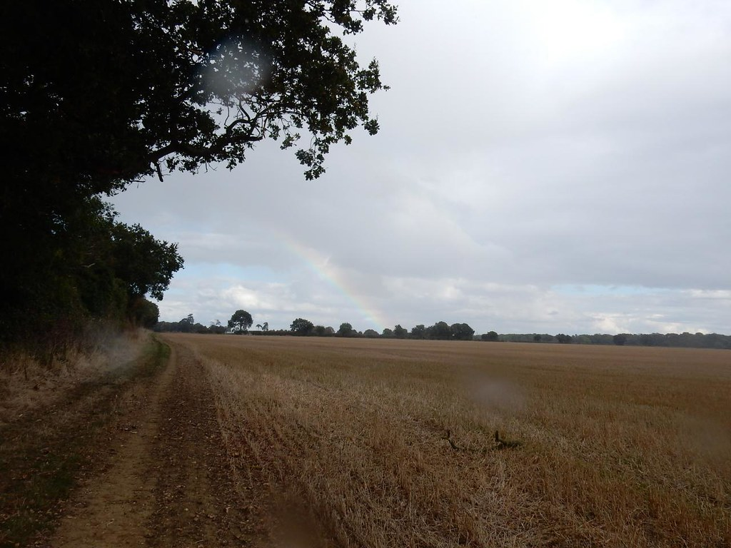 Rainbow Sandy to Biggleswade