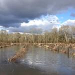 Photos des lecteurs | Bois de Boulogne, quartier de Saubagnacq, Dax