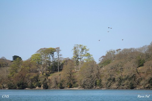 River Fal by Stocker Images