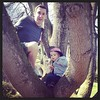First time climbing a tree (papa helped) #latergram