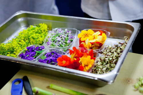The beautiful edible flowers
