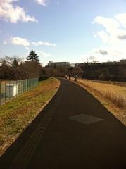 お散歩写真