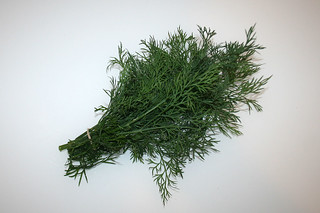 05 - Zutat frischer Dill / Ingredient fresh dill
