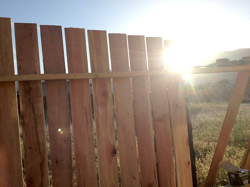 fence-sun