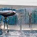 150216 Enoshima Aquarium-20.jpg