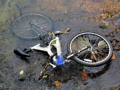 Is the bike in #LickCreek trash or not?
