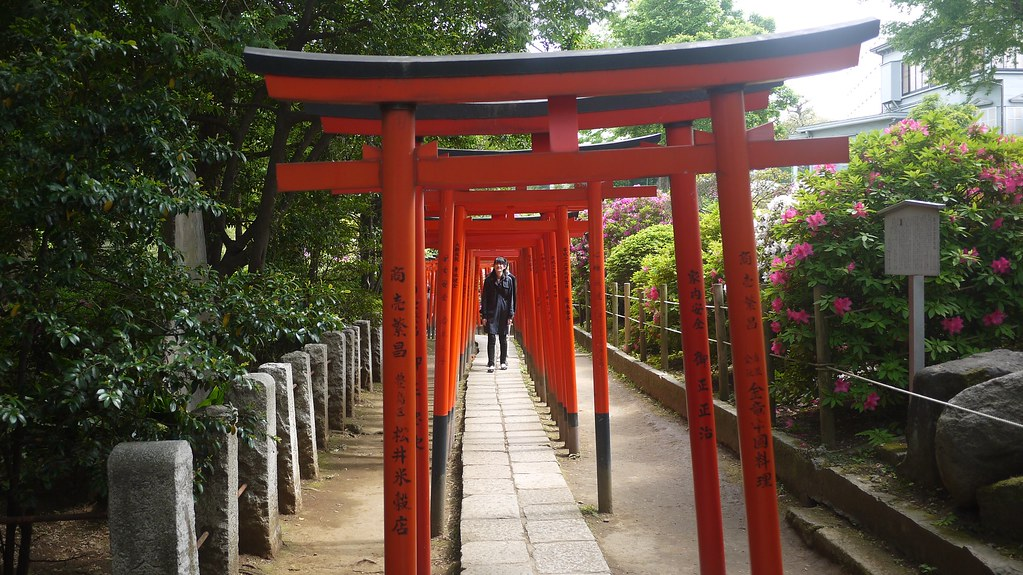Nezu Shrine Torii Gates
