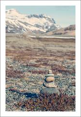 Icelandic Zen