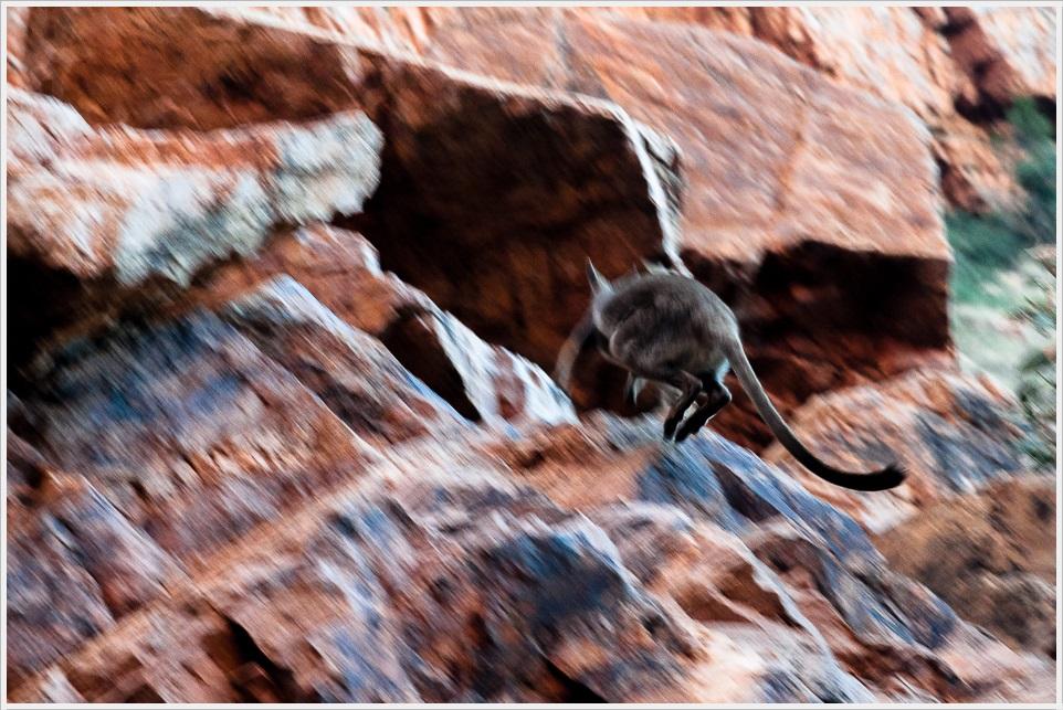 2013 05 25_z2strony_Uluru_DSC_0166