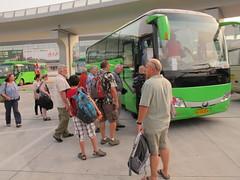 Grasshopper Bus