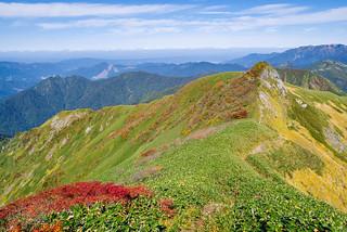 蓬峠へ向けて茂倉岳を下り始める・・・稜線の紅葉が綺麗です