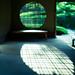 lattice shadow by N.sino