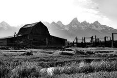 Wyoming pics 109