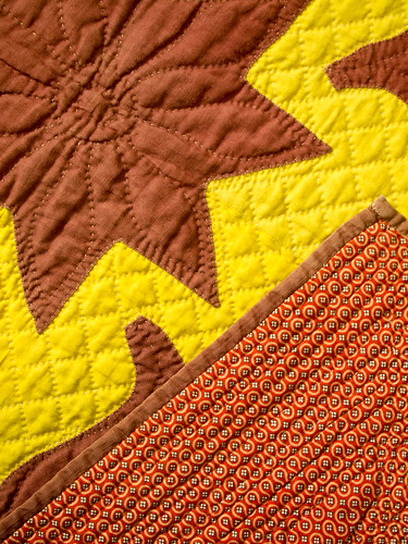 Brown and Yellow Backing