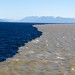 Yin Yang on the Salish Sea by Ocean Networks Canada
