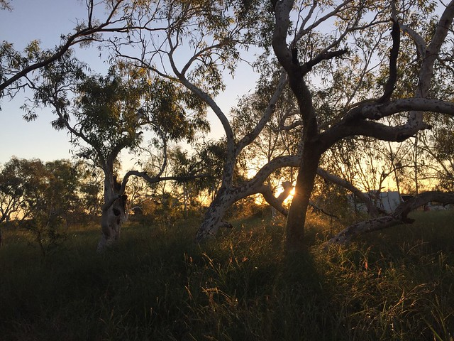 Featured medium photo of Nanutarra on TripHappy's travel guide
