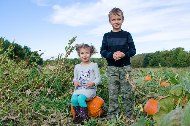 20161008-Pumpkin-Picking-0524