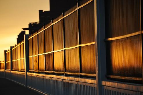 sunrise fence nikon goldensunrise nikond700 columbiapkw