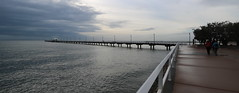 on and around shorncliffe pier, july 2016 (3)