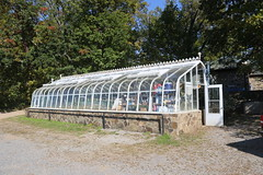 Greenhouse at Ayrshire Farm