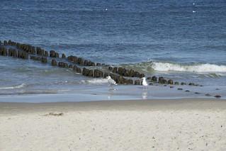 Plaża wschodnia 의 이미지.