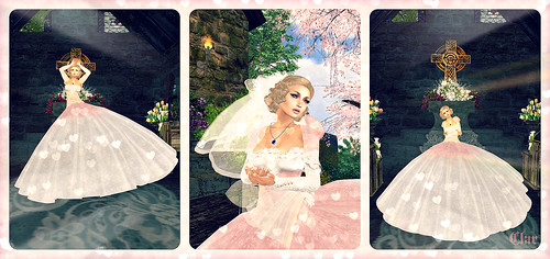 Brushing Bride Collage
