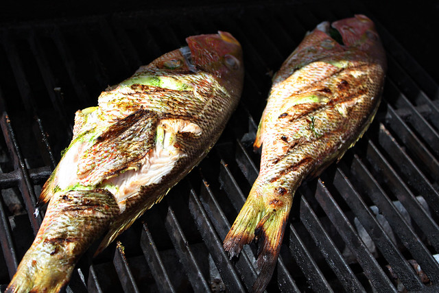 Grilled Red Snapper on grill whole