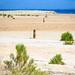 Salton City, Salton Sea by CJ Glynn