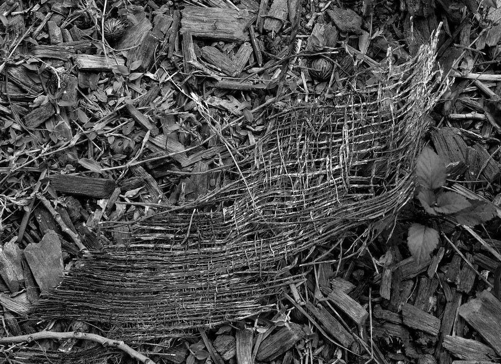 Nature S Roots Farm