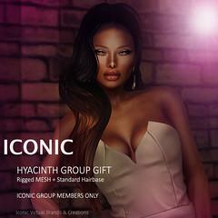 iconic_hyacinth
