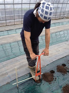 苗を植える穴をあける道具