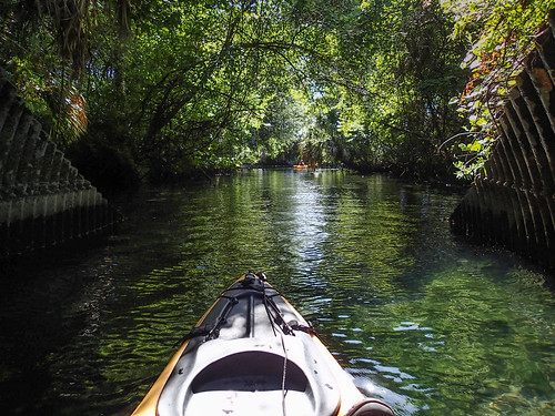 usa color green water river landscape kayak unitedstates florida kayaking manmade features watercraft crystalriver