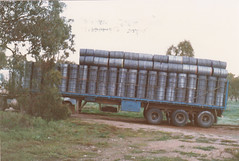 350 drums of honey A.Hendy at St. Arnaud 29aug1987