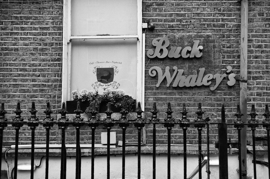 buck wayley