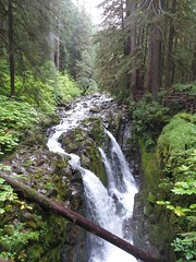 Olympic National Park/ 9-7-2016