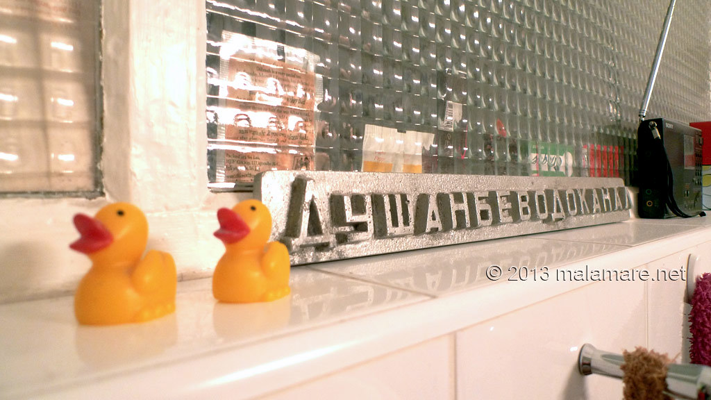 Vienna bathroom and ducks