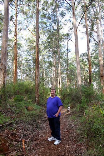 Pemberton - Gloucester Tree - Mike on the Trail