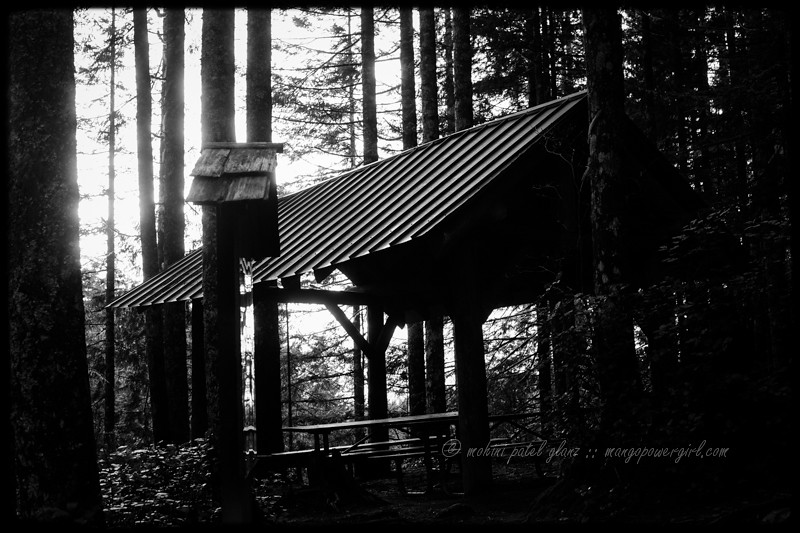 picnic shelter at wallace falls state park