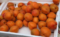 fruit tree(0.0), peach(0.0), plant(0.0), loquat(0.0), nectarine(0.0), apricot(1.0), produce(1.0), fruit(1.0), food(1.0),