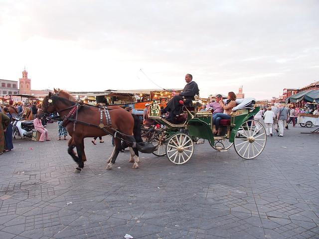 MARRAKESH不眠廣場上的觀光馬車