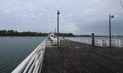 on and around shorncliffe pier, july 2016 (44)