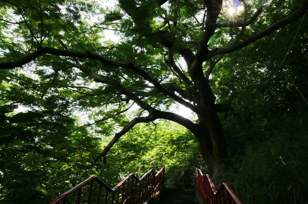 高雄林園一日遊 (9)
