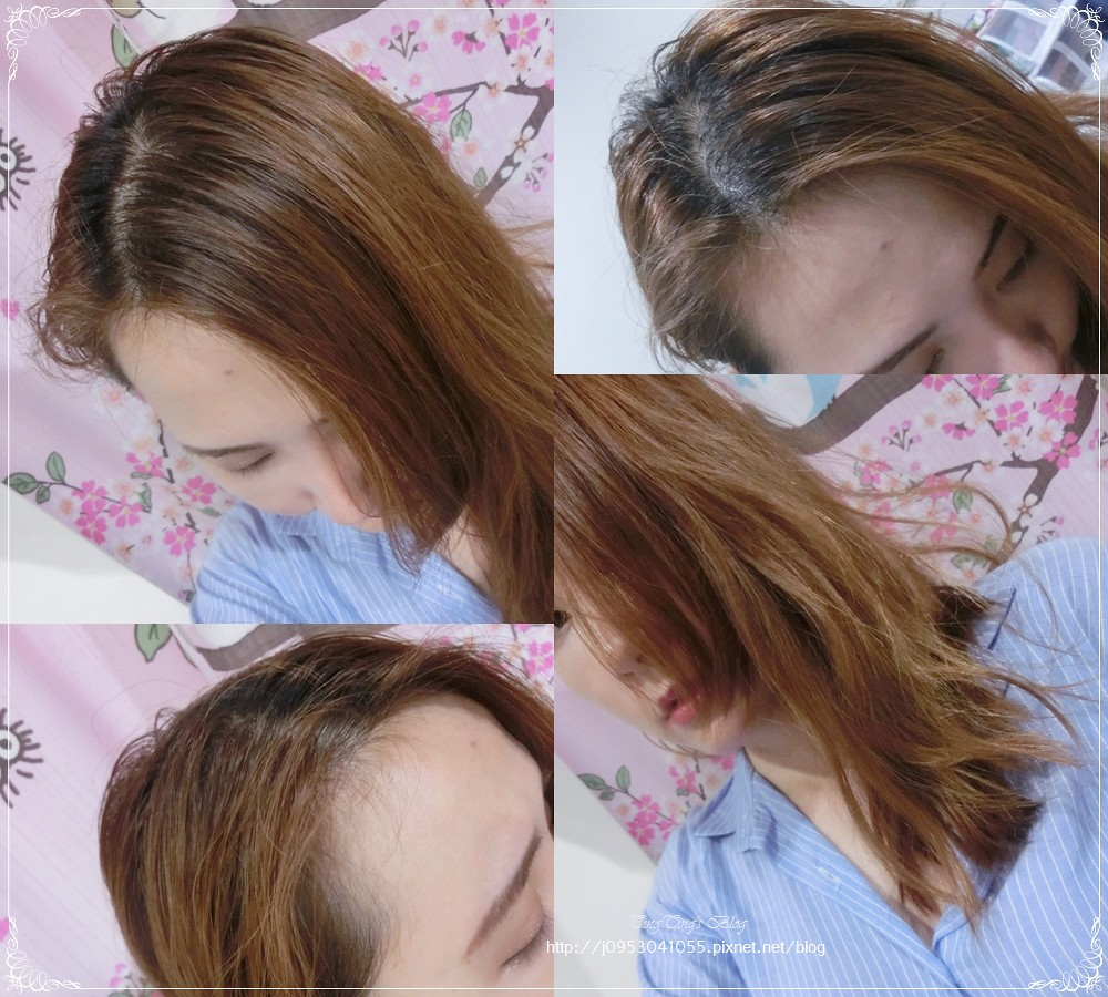 Fresh Line 洗髮餅 (5)