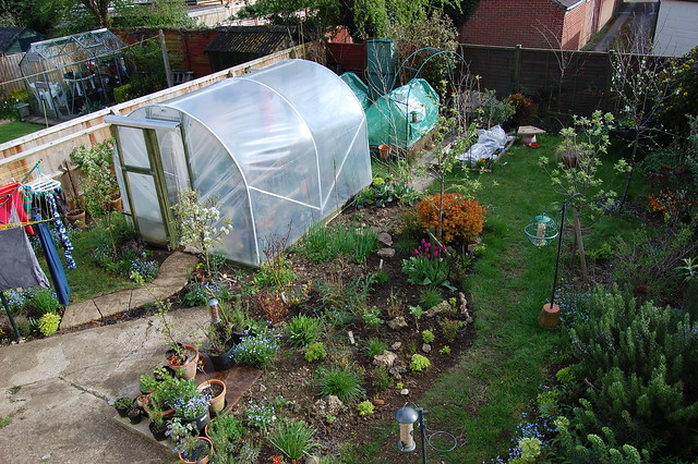 A view of the back garden from an upstairs window