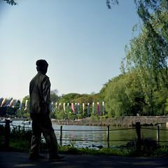 池畔の散歩