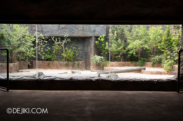 River Safari - Giant River Otter, display top level