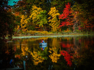 Michigan in Pictures **Explored** #83